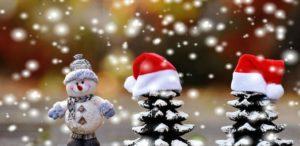 Recital Virtual de Navidad 2020 de EGP